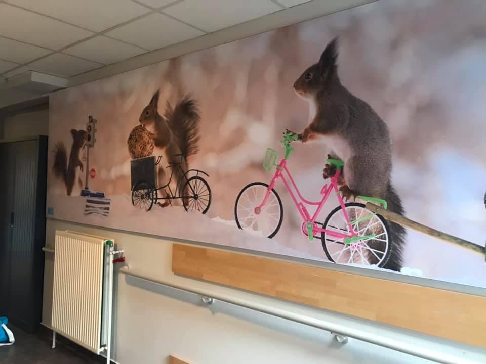 UZ Gent | Update Kinder- en jeugdpsychiatrie